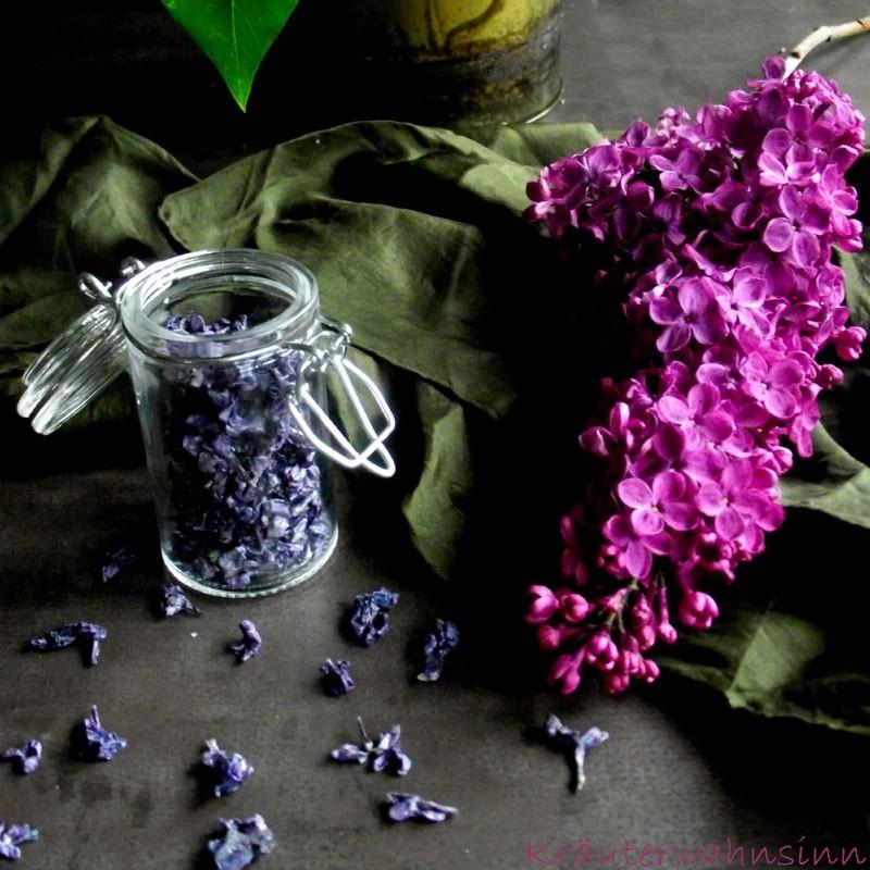 Blüten-Rezepte